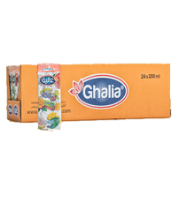 Ghalia-Cocktail-Juice200ml-24Pcs