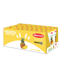 PINEAPPLE NECTAR 250ML*24